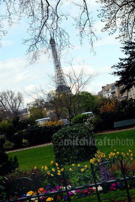 Parisinspring
